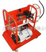 SG2000SF6气体抽真空充气体装置 SG2000