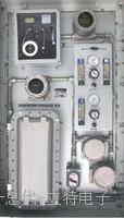 1700系列总硫分析仪 1700