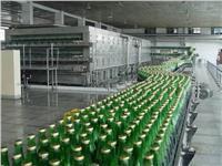 啤酒廠的配電系統電能質量解決方案