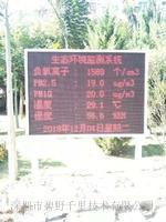 广东梅州安装项目负氧离子监测设备带温湿度pm2.5监测