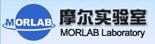 摩尔实验室