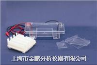 琼脂糖水平电泳仪RDY-SP1Z RDY-SP1Z
