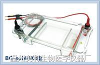 多用途水平电泳仪 BG-subMIDI型