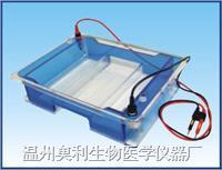 BG-subMAX型宽式水平电泳仪 BG-subMAX型
