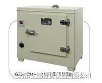 电热恒温干燥箱 GZX-DH.300-S