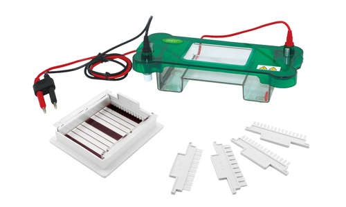 君意JY-SPBT水平电泳槽|伯乐进口品质|全新设计|上海现货