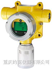 气体探测器 XCD
