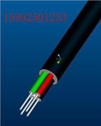 船用电力电缆CJPF85/SC-2*1.5