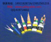 WDZ-YJV、WDZ-YJV32、WDZ-YJV22、WDZ-VV22低烟无卤阻燃电力电缆
