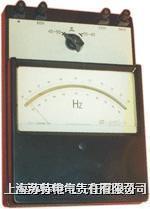 0.2级 电动系频率表