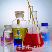 Anti-phospho-APC (Ser2054)抗体